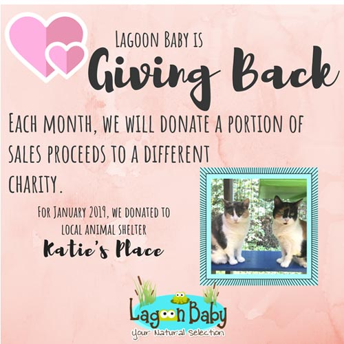 Giving Back - January 2019 - Katie's Place